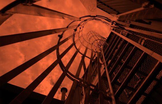 Caged Rung Ladder